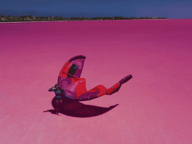 No es Photoshop, así es hacer kitesurf en la laguna Hutt de Australia, donde el agua es de color rosa