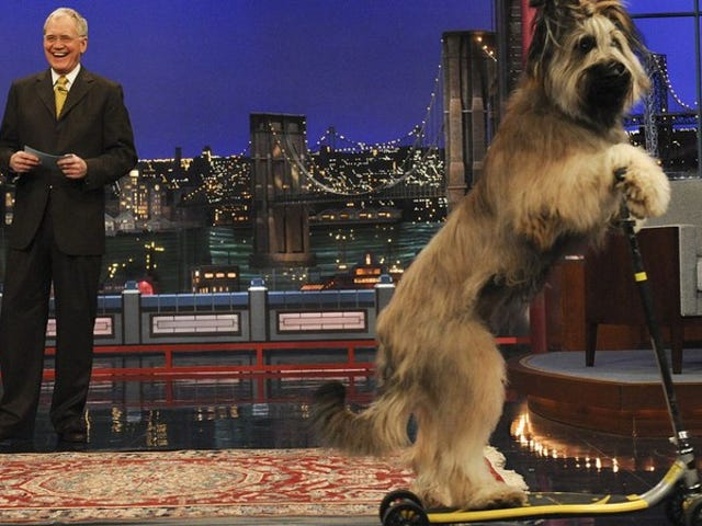 """<a href=""""https://news.avclub.com/read-this-david-letterman-and-his-former-writers-share-1798279636"""" data-id="""""""" onClick=""""window.ga('send', 'event', 'Permalink page click', 'Permalink page click - post header', 'standard');"""">Read This: David Letterman and his former writers share the best unaired jokes</a>"""
