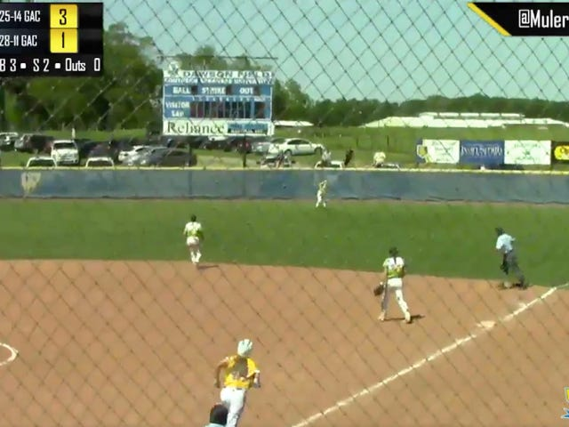 Softball Fan's Spectacular Catch Overshadowed By Even More Spectacular Fall Out Of Pickup Truck