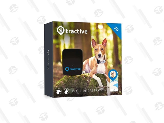 "<a href=https://kinjadeals.theinventory.com/keep-track-of-your-furry-friend-with-this-discounted-gp-1836147704&xid=17259,15700023,15700186,15700190,15700256,15700259,15700262 data-id="""" onclick=""window.ga('send', 'event', 'Permalink page click', 'Permalink page click - post header', 'standard');"">Panatilihin ang Track ng Iyong Furry Friend sa Discounted GPS Tracker na ito</a>"