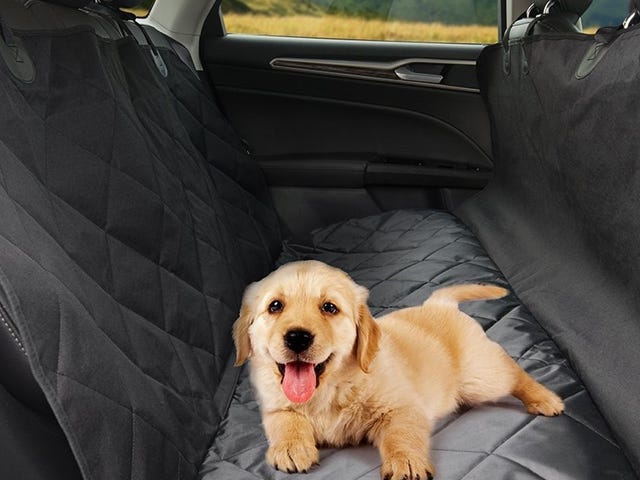 Turn Your Backseat Into a Pet Kennel With This $19 Cover
