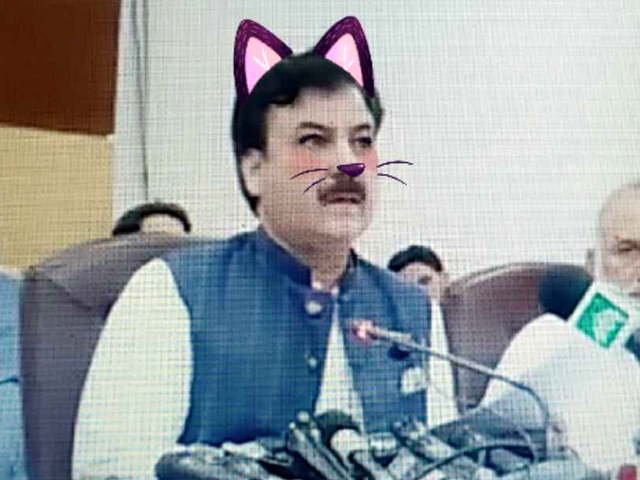Versehentlicher Kitty Cat-Filter untergräbt den ernsten Livestream des pakistanischen Ministers
