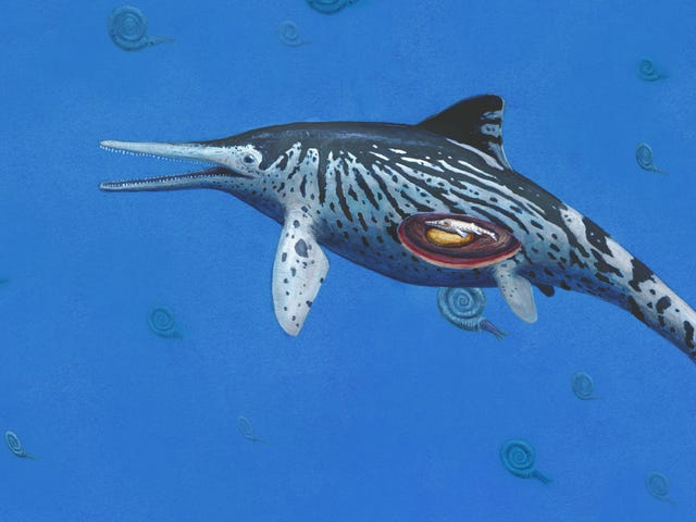 Largest Ichthyosaurus Fossil Ever Discovered Contains an Unexpected Gift