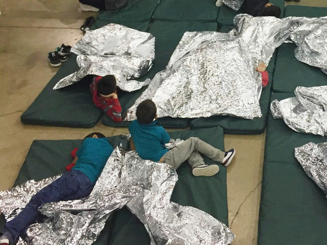 1.300 Professors Sign Letter, som fordømmer separasjon av innvandrerfamilier som barnemishandling