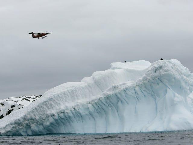 Scienziato dell'Antartide che affronta il tentativo di omicidio per il presunto collega che ha rovinato il libro