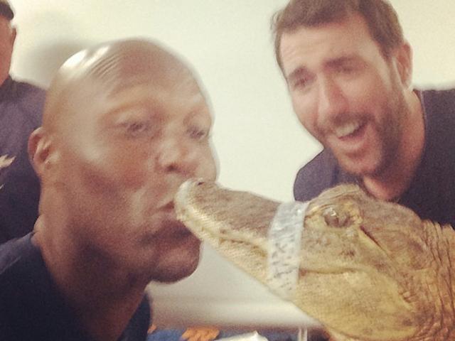 Torii Hunter Kissing An Alligator
