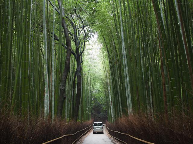 Arashiyama After Hours. Kyoto, Japan
