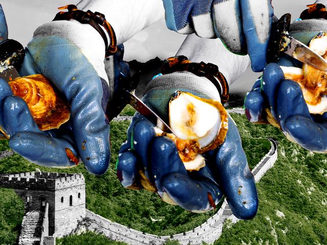 Konkurrencedygtig Oyster Shucking er ægte, dekadente og Kinas bedste parti