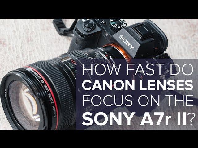 Voici à quelle vitesse les objectifs Canon se concentrent sur le nouveau Sony A7r Mark II