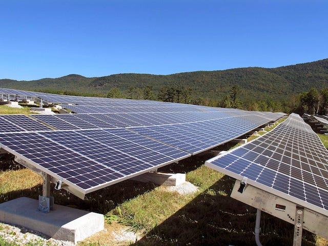 California se convierte en el primer estado en obligar que las casas nuevas se construyan con paneles solares