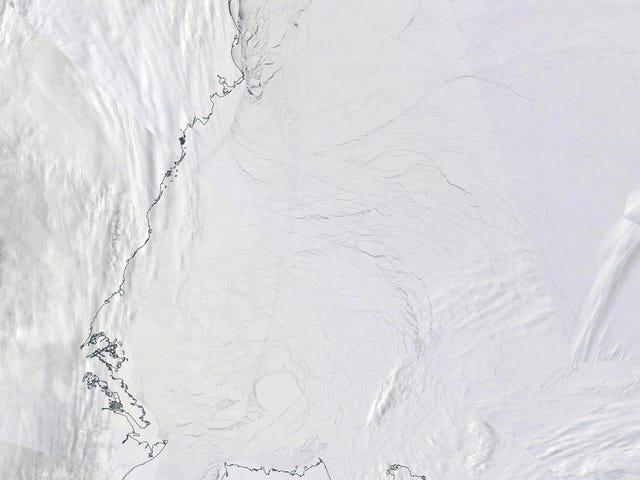 Polarsirkelen hadde bare sin tidligste snøsmelten noensinne