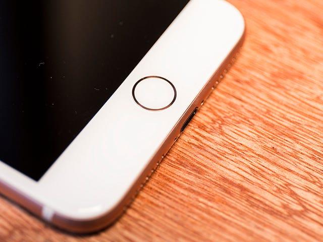 Zou Apple echt Touch ID op de iPhone 11 kunnen brengen?