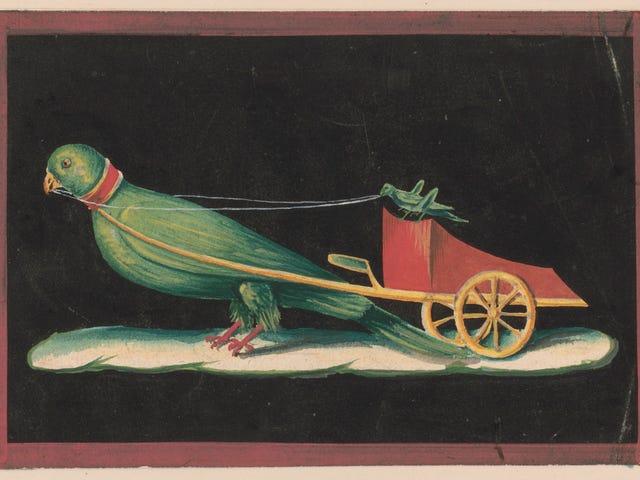 Affresco a Pompei che mostra un pappagallo che tira un carro guidato da un cricket
