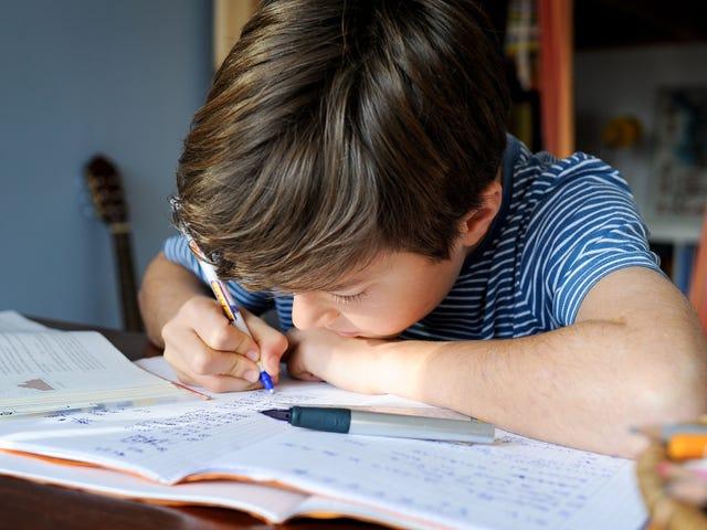 अभी होम स्टे में बच्चों के लिए एक दिन का शैक्षणिक कार्यक्रम बनाएं