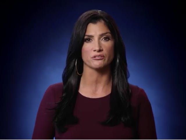 Dana Loesch Can't Believe People Are So Angry About Her NRA Ad That All But Calls for Civil War