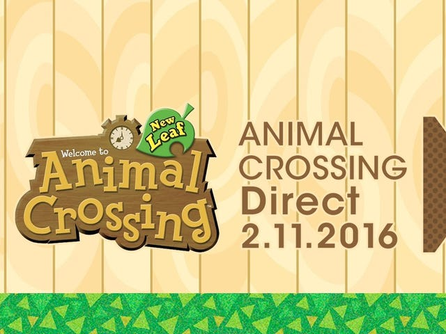 Animal Crossing Direct Incoming Blip
