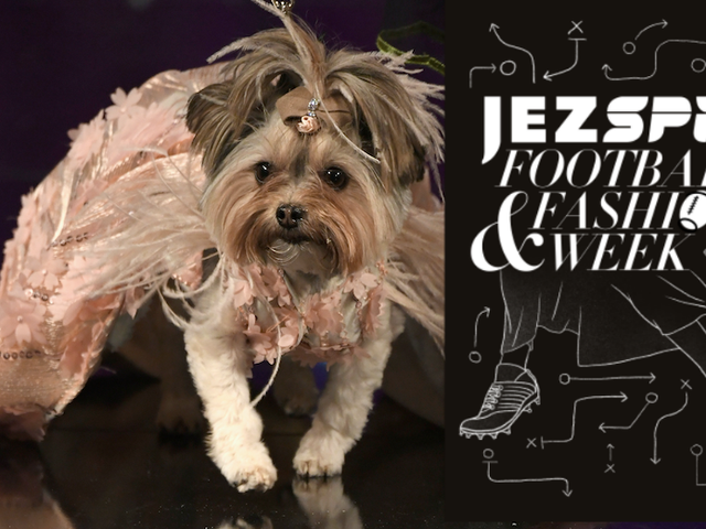 A Jezebel Woman and Deadspin Man Attend a Dog Fashion Show
