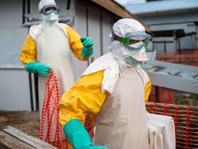Ang Ebola outbreak ay Nagdeklara ng isang Public Health Emergency sa pamamagitan ng World Health Organization