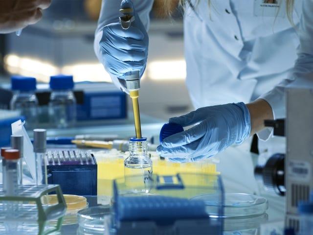Comment fonctionnent les essais cliniques?