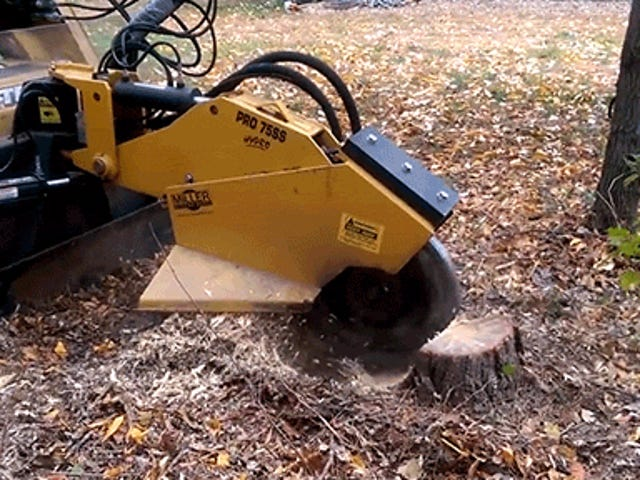 Watch This Stump Grinder Basically Vaporize a Tree Stump