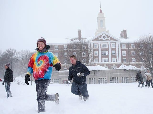 सभी व्हाइट संस हार्वर्ड में जाते हैं