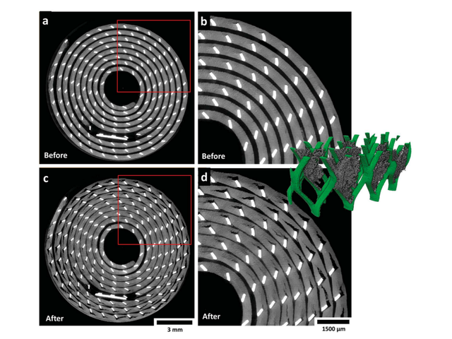 Real-Time3D Imaging Shows How Disposable Lithium Batteries Degrade