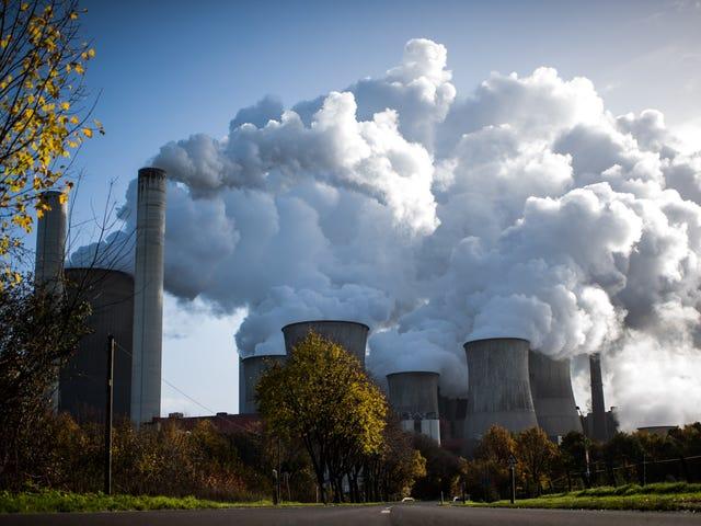 Stuntelige klimaat-ontkennen Trump Nominee voor Top Environmental Positie wordt geblokkeerd door Senaat Democraten