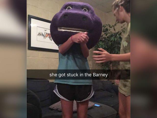She Got Stuck in the Barney