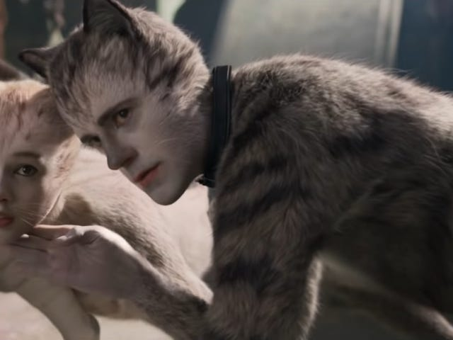 Get Involved, Internet: Force some masochists to watch 24 straight hours of Cats for charity