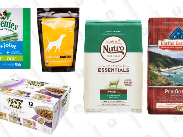 Fetch 30% Off Pet Food and Treats From This Jet Sale