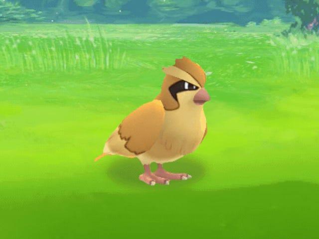 Mo' Pokémon Mo' PokéProblems