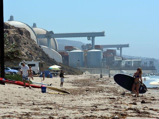 """Terminal Beach"" - Stuart Hamm (1988)"