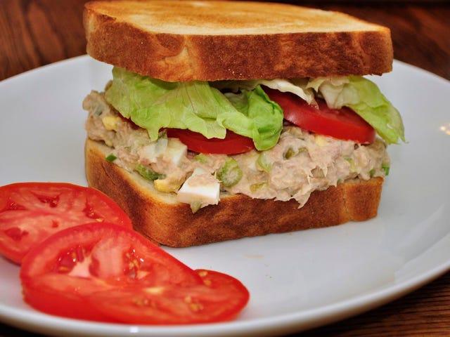 오늘의 샌드위치 : 참치