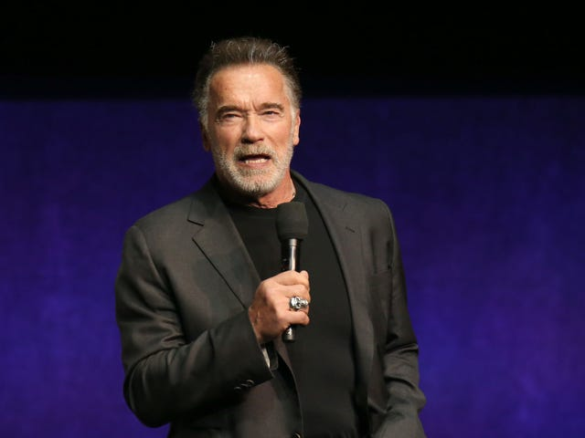 Random dumbass sucker-flying-jump-kicks an unimpressed Arnold Schwarzenegger