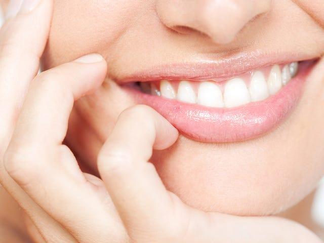 Existem Algumas Bactérias Seriamente Psicodélicas Que Vivem em Seus Dentes