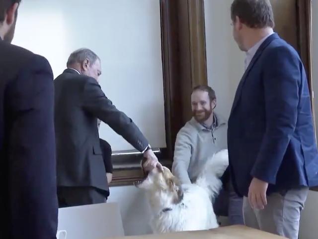 Michael Bloomberg พบสุนัขสำหรับสิ่งที่สามารถเป็นครั้งแรกเท่านั้น