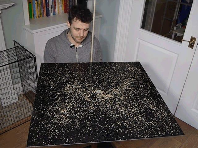 La science ressemble à de la magie alors que ce couscous renversé s'organise parfaitement