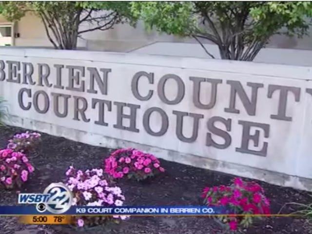 Vier mensen neergeschoten in het gerechtsgebouw van Michigan, drie gerapporteerde doden [bijgewerkt]