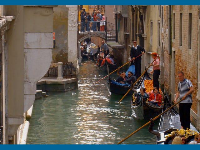 Les canaux historiques de Venise se sont transformés pendant le verrouillage de l'Italie