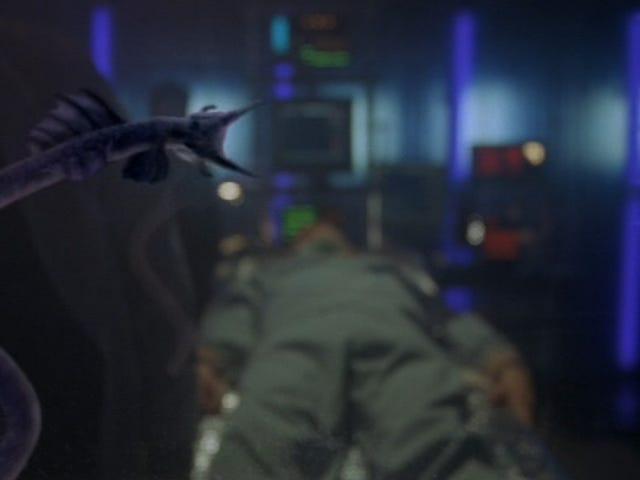 Stargate: SG-1 Rewatch - 5 ª Temporada, Episódio 11 <i>Desperate Measures</i> e Episódio 12 <i>Wormhole X-Treme!</i>