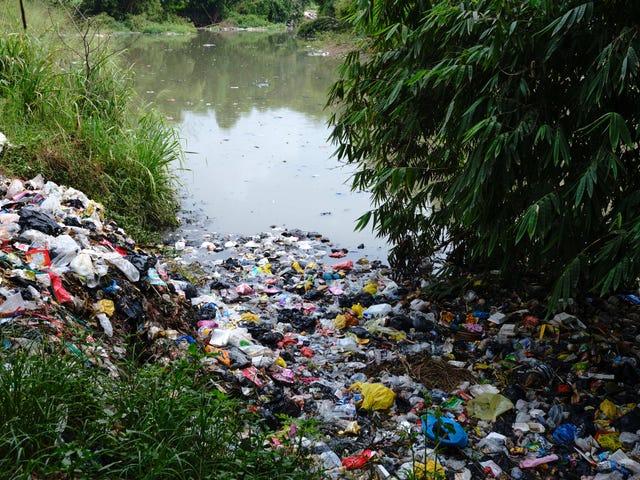 Kami ay Kumain ng isang Buong Lot ng Plastic ... Uh, Ay Iyon Masamang?