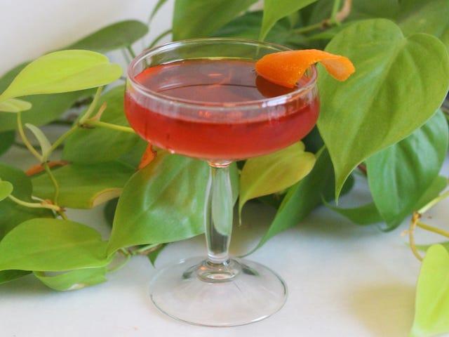 Bliv fortrolig med en 'Old Pal' cocktail