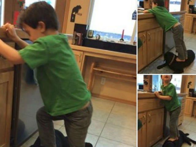 サラ・ペイリンの子供は犬の上に立ちます。  「怠惰」であることのためのパリン非難犬