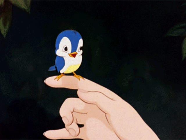 ฉันว่างเหมือนนกตอนนี้