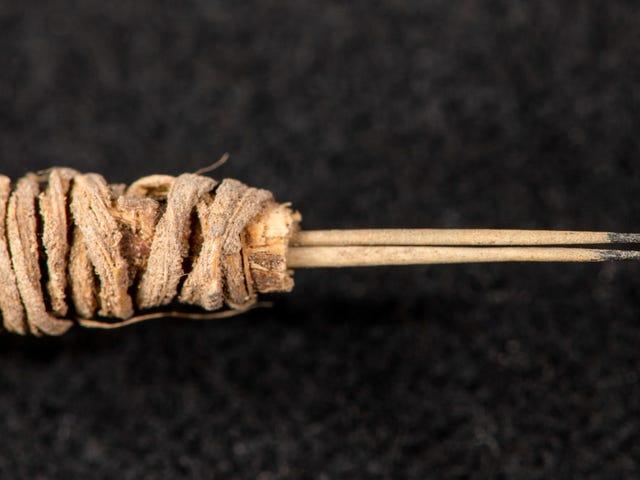 Công cụ hình xăm 2.000 năm tuổi được tìm thấy trong tủ lưu trữ Washington