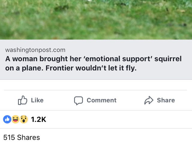 Emotional Support What?
