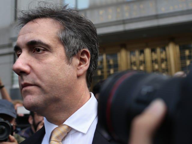 Michael Cohen si dichiara colpevole di essere un grande bugiardo