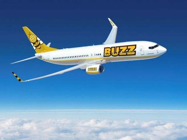 We Have a New Cutest Airline