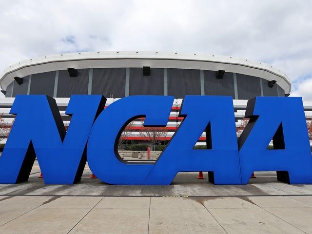 Het NCAA-bestuur is van plan een beleid voor seksueel geweld vast te stellen voor universiteitsatleten
