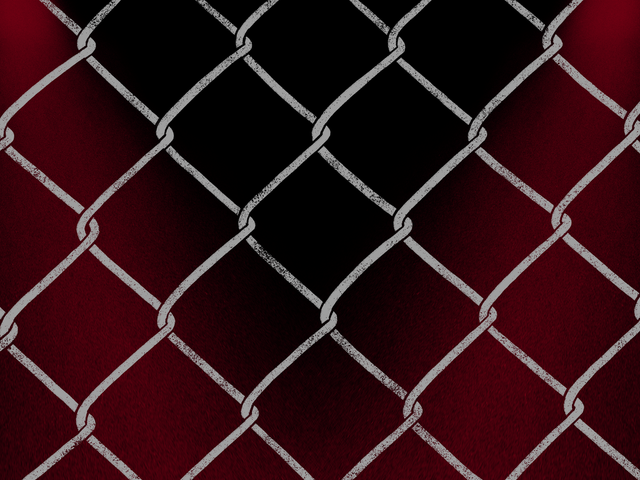 作为儿童色情收藏家暴露的MMA作家